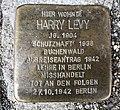 15.8.2018 Stolperstein von Harry Levy Auerbach Vogtl. Kaiserstraße 19.JPG