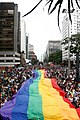 17ª Parada LGBT de SP.jpg