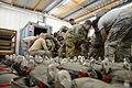 173 Airborne Brigade conduct airborne operation 150121-A-FS311-041.jpg