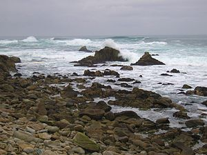 17-Mile Drive beach, California.
