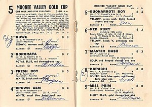 Moonee Valley Gold Cup