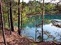 20050521135DR Teichlandschaft Kromlau - Weißwasser.jpg