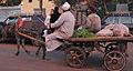 2008 cart Cairo 3118081811.jpg