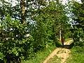2011-05-08-160226 49,103942, 8,033877.JPG - panoramio.jpg