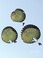 2011.4.4 특전사 자격증1기 공수훈련 (7634169870).jpg