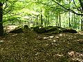 2012 Pfälzerwald 175 Kesselberg Gletschermulden.jpg
