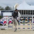 2013 Longines Global Champions - Lausanne - 14-09-2013 - Sheikh Ali bin Khalid Al Thani et Cantaro 32.jpg