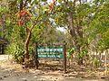 2014020501 Phu Phrabat W.jpg