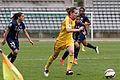20150503 PSG vs Rodez 043.jpg