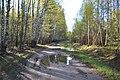 2015 09 Национальный парк Мещёрский.jpg