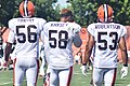 2015 Cleveland Browns Training Camp (20238392792).jpg
