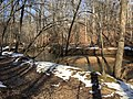 2016-02-08 13 42 25 View north down Difficult Run from the Gerry Connolly Cross County Trail between Vale Road and Lawyers Road in Oakton, Fairfax County, Virginia.jpg
