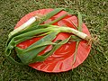 6367Fried rice Philippines Leeks KIntsyay Repolyo 39.jpg