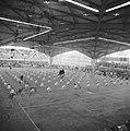 75-jarig bestaan Hilversumse Gymnastiek Vereniging (HGV), Bestanddeelnr 912-6099.jpg