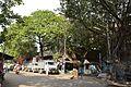 86 Maharshi Debendra Road - Kolkata 2016-10-11 0725.JPG