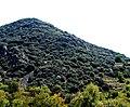 A@a agios theodoros area limassol cy - panoramio (10).jpg