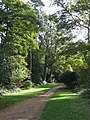 A path in Sheringham Park - geograph.org.uk - 1110529.jpg