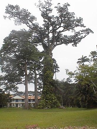 Aburi - Aburi Botanical Gardens