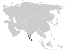 Acritillas indica distribution map.png