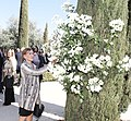 Actos en recuerdo de las victimas del 11M en el 15 aniversario de los atentados. - 33476450178 04.jpg
