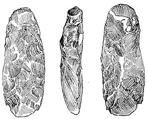 Shoe-last celt - An adze from the Meayll Hill, Isle of Man