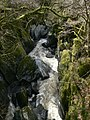 Afon Conwy - geograph.org.uk - 756585.jpg