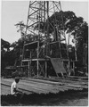 Africa. Gabon, French Equatorial Africa. The rig is up, a native laborer sits sleepily on the scores of drill pipe... - NARA - 541652.tif