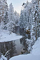 Ahja jõgi 2010 01.jpg
