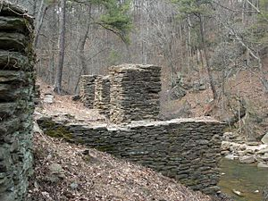 Historic mills of the Atlanta area - The ruins of Akers Mill