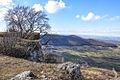 Albtrauf bei Ochsenwang 04 mit Breitenstein, Teck und Burg Teck an einem schönen Februartag 2014.jpg