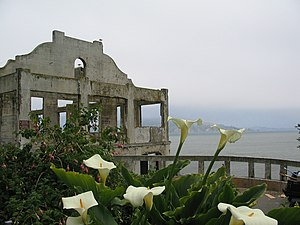 Alcatraz Island - The Social Hall, destroyed by fire during the Native American occupation.