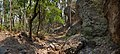 Alexander Canyon - Flickr - aspidoscelis (1).jpg
