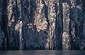 Alkefjellet (js) 6.jpg