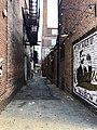 Alley, Madison Avenue, Covington, KY (49661281298).jpg