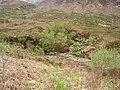 Allt a' Choire Dhuibh - geograph.org.uk - 188703.jpg
