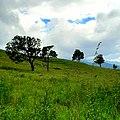 Ambalammana plains 2.jpg