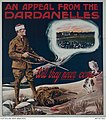 An appeal from the Dardanelles - will they never come?.JPG