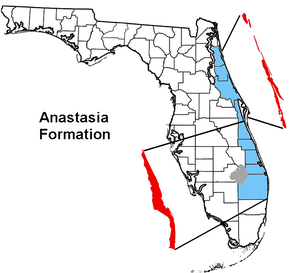 Anastasia Formation - Location of the Anastasia Formation (red) along the east coast of Florida.