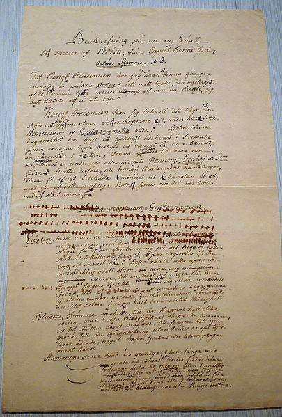 File:Anders Sparrman manuscript - Etnografiska museet - Stockholm, Sweden - DSC00804.JPG