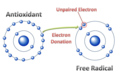 Antioxidants Free radicals Lobo et al.,.png