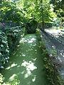 Arboretum Gaston Allard 3.JPG