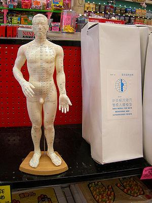 Acupuncture doll. Archie McPhee store, Ballard...