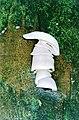 Atherosperma-Fungus-CumberlandScenicReserve1997.jpg