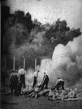 Sonderkommando in auschwitz birkenau