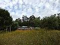 Automotora em Monte Redondo, Linha Oeste. (41607841895).jpg
