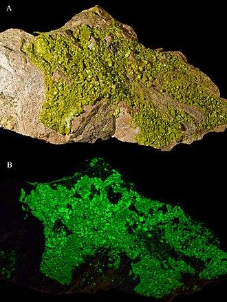 Autunite - Image: Autunite UV(AB) France
