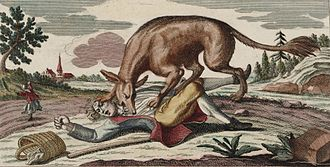 Wolf attacks on humans - Engraving depicting the beast of Gévaudan (1764)