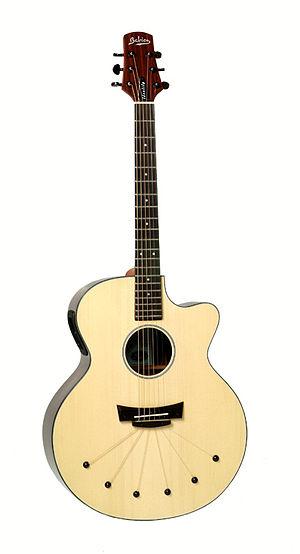 Babicz Guitars - Babicz Identity Jumbo Rosewood
