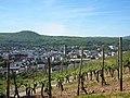 Bad Neuenahr viewed from a vineyard in May 2017.jpg