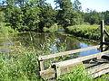 Bad Schwartau, Naturerlebnisraum Schwartautal, am Kurpark IMG 9934.JPG